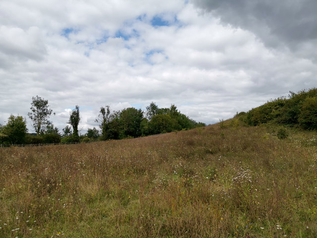 Former line of Winchester Bypass, west of St Catherine's Hill, near Winchester