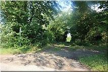 TL4339 : Icknield Way Trail, Heydon by David Howard