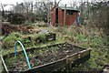 NS5569 : Garscube Allotments, New Year's Day 2020 by Richard Sutcliffe