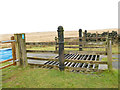 SE2353 : Cattle grid on the road to Scargill Reservoir by Stephen Craven