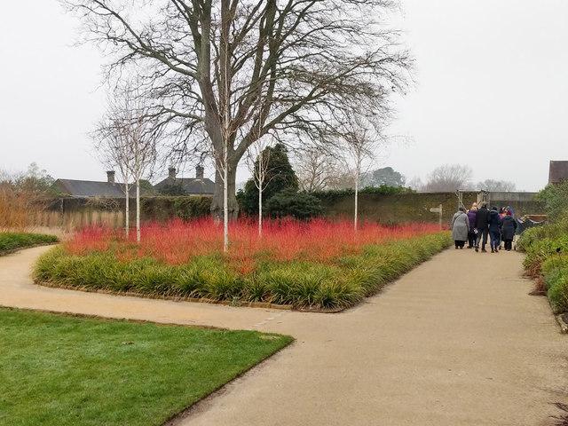 Part of the Winter Garden, Wakehurst