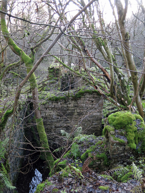The former Brandon Walls lead mine and ore works - shaft and wheelpit