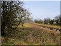 SD7908 : Track near Rothwell Bridge by David Dixon