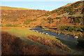 NU0016 : River Breamish below Shivers Cleugh by Derek Harper