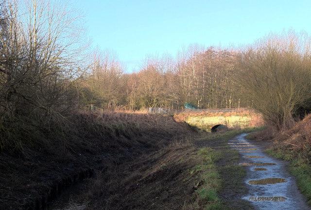 Bridge over Chorlton Brook