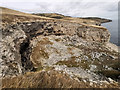 SY9976 : Cliffs at disused quarry between Seacombe and Dancing Ledge by Phil Champion