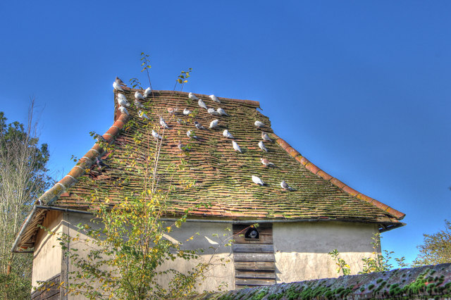 Dovecote in Clare, Suffolk
