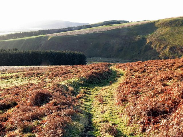 Farm track on Clennell Hill