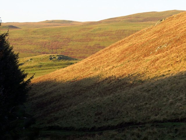 Southern slope of Clennell Hill