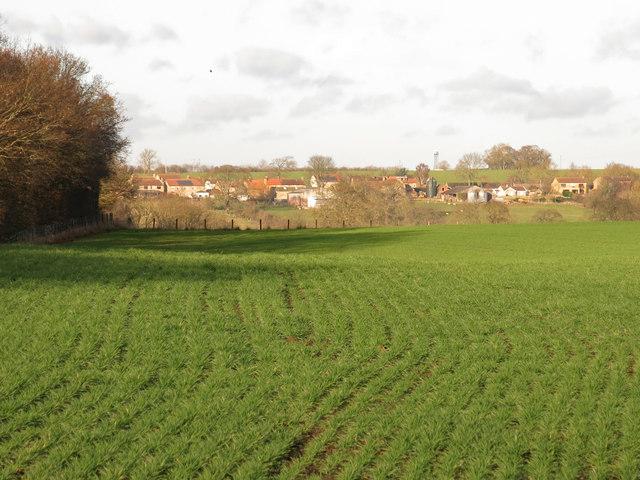 Farmland south of Brafferton