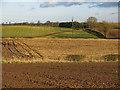 NZ3019 : Farmland south of East Ketton by Mike Quinn