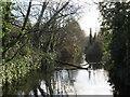 TQ2669 : River Wandle near Merton by Malc McDonald