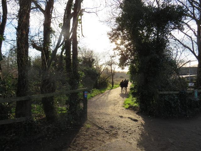Wandle Trail near Merton