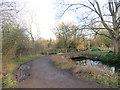 TQ2568 : Bridge over a drain in Morden Hall Park by Malc McDonald