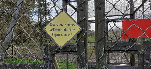 Advice for keepers on the tiger cage at Whipsnade Zoo