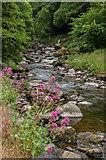 SS7249 : East Lyn River by Ian Capper