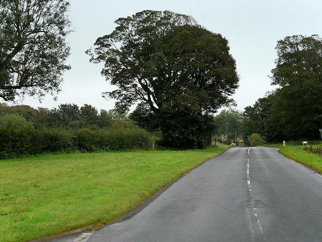 Monktonhill Road near Southwood