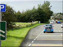 NS3628 : Layby on the A77 near Monkton by David Dixon