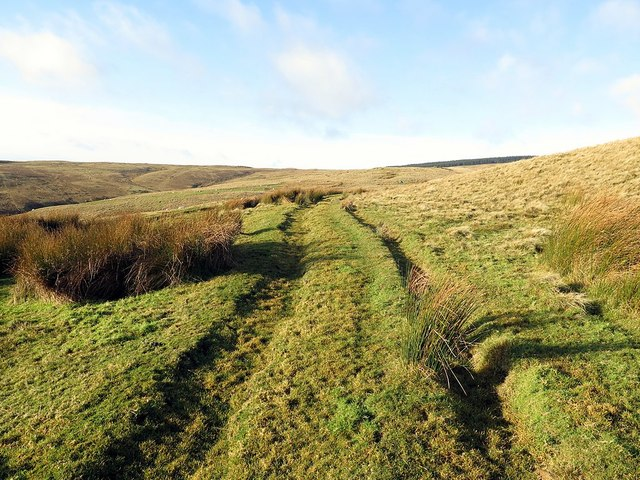 Old track to Puncherton above Iving Cleugh