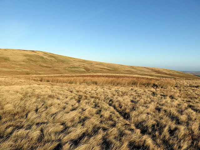 Moorland below St David's Cairn