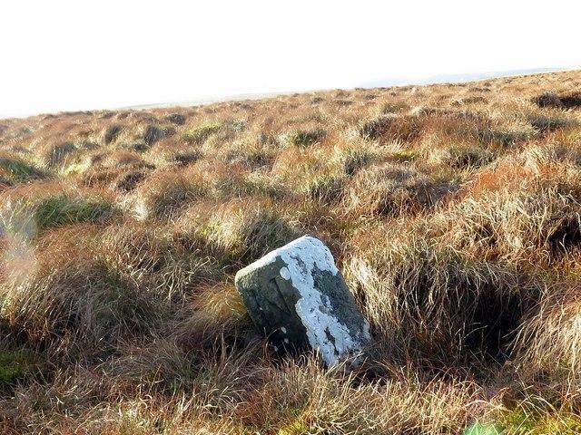 Boundary Stone below St David's Cairn