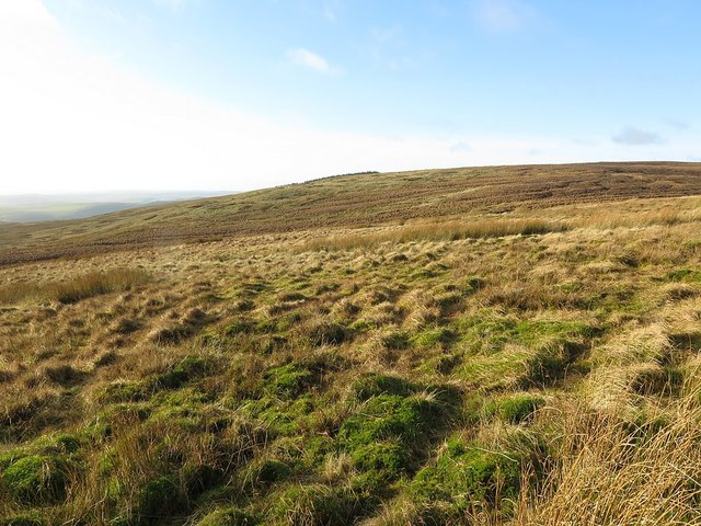 Rough moorland near White Stones