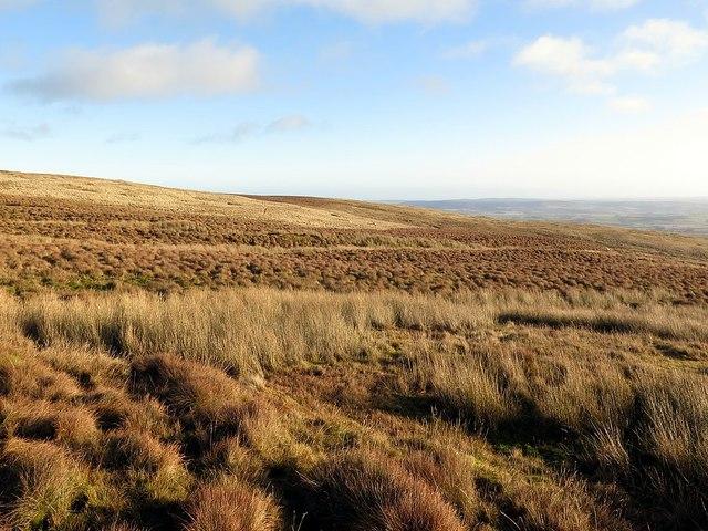 Rough moorland near White Stones