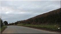 ST8969 : Corsham Road, Thingley by David Howard
