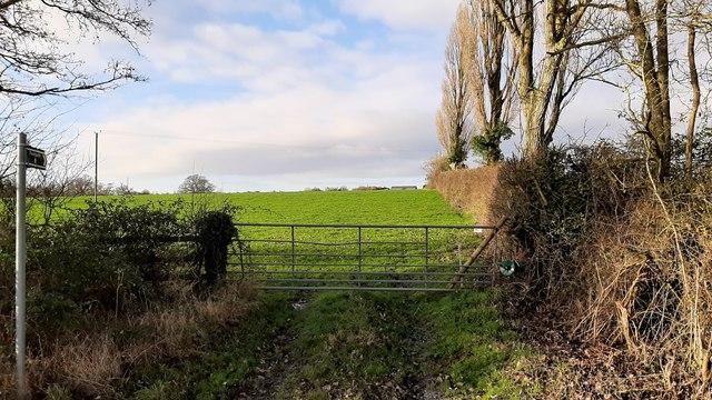 Footpath on Baughton Hill
