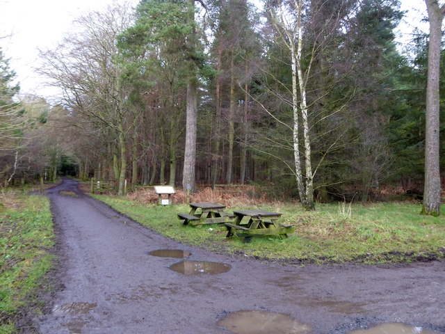 Picnic tables by car park and main track into Bowmont Forest