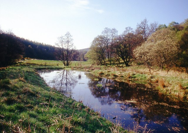Pond by the River Don