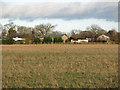 NZ3919 : Farmland east of Gooseberry Farm by Mike Quinn