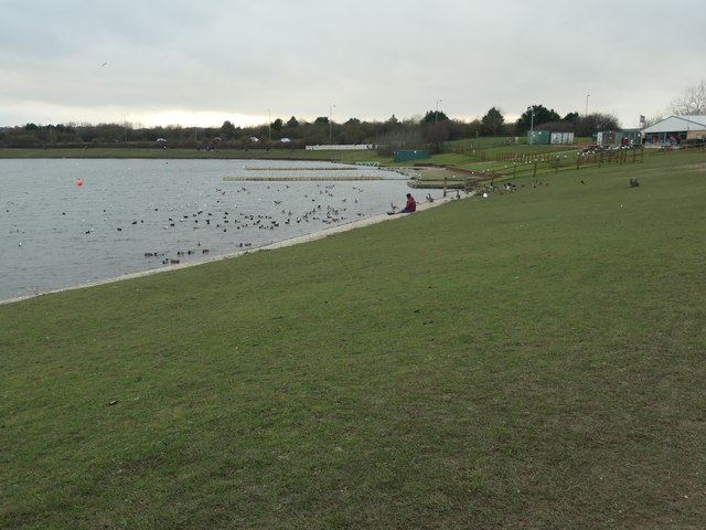 Looking at the birds, Pugneys Country Park