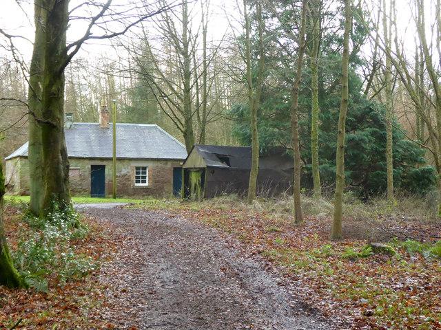 Buildings near cottage, Bowmont Forest