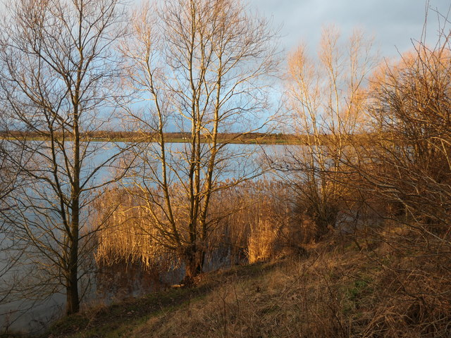 Winter sunlight at Pugneys Country Park
