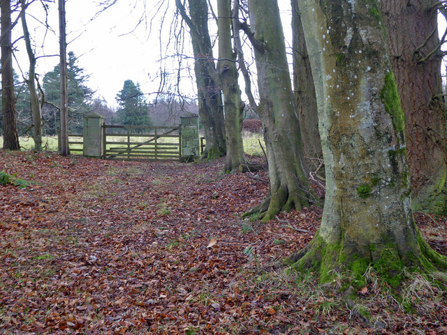 Gate into field, Bowmont Forest