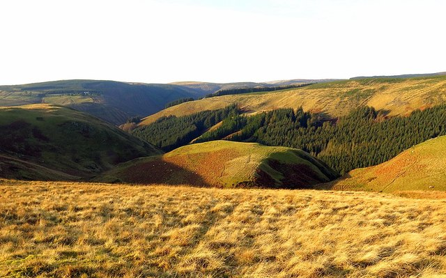 Ridge above Allerhope Burn
