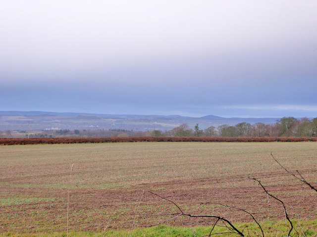 View north from edge of Bowmont Forest