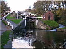 SE1039 : Looking up the Bingley Five Rise Locks by John H Darch
