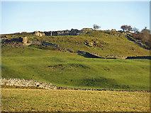 NY9539 : Farmland below Harrow Bank Quarry by Mike Quinn