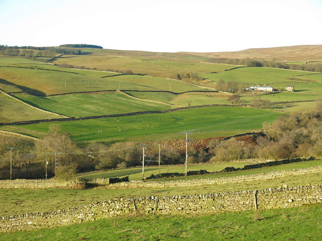 The lower Rookhope valley around Hole House (2)