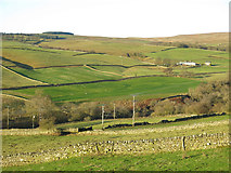 NY9539 : The lower Rookhope valley around Hole House (2) by Mike Quinn
