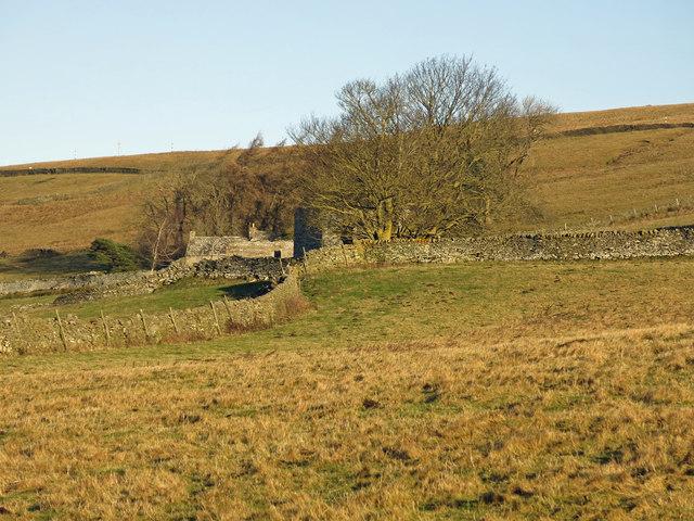 Rough pastures below Broad Brush and Shepherd's House