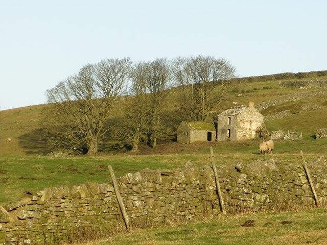 Rough pastures below Shepherd's Cottage
