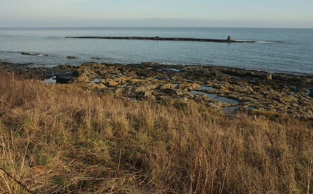 Foreshore north of Craster