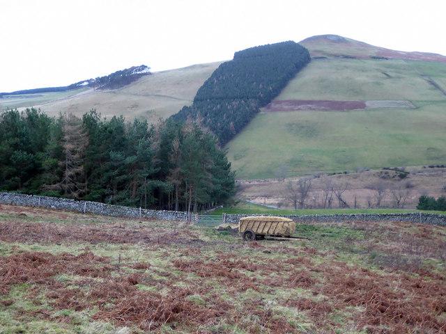 Trailer of hay