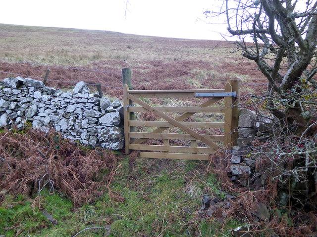 Gate through wall
