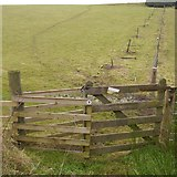 NH6750 : Gate below Dun Lundie by Richard Webb
