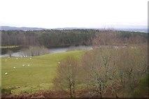 NH6750 : Loch Lundie by Richard Webb