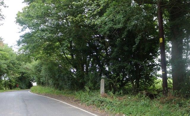 Lane to Taverner's Green